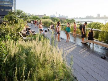 NYC's popular High Line Park. Photo: thehighline.org