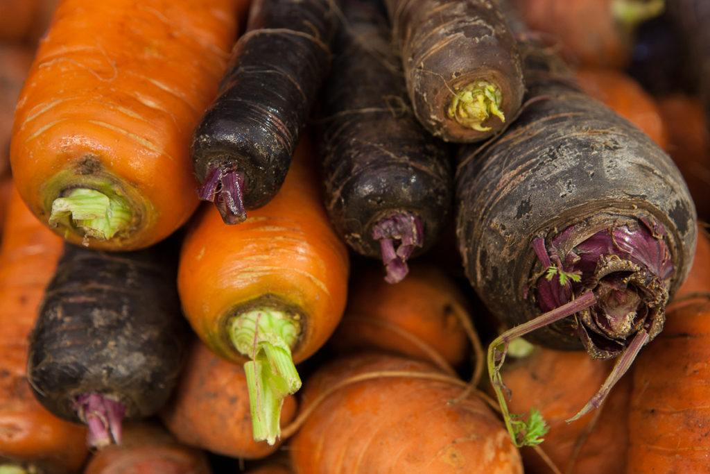 Carrots from Earth Natural Foods